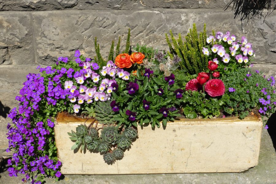 jardininieredeuil-compositionflorale