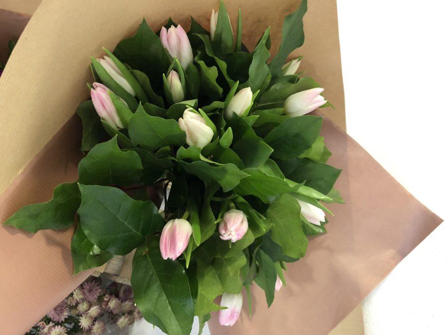 bouquet-de-15-tulipes