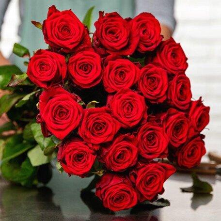 bouquet-de-24-roses-rouge